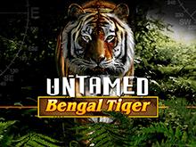 На деньги игровой автомат Untamed Bengal Tiger
